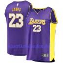 Fanatiker Branded Lebron James Los Angeles Lakers Lila 2017/18 fast Brechen Trikots
